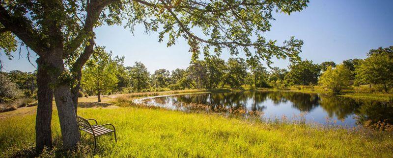 King_Oaks_Masthead_Pond.jpg