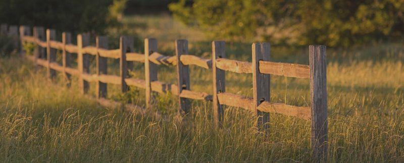 King_Oaks_Masthead_fence_faded.jpg